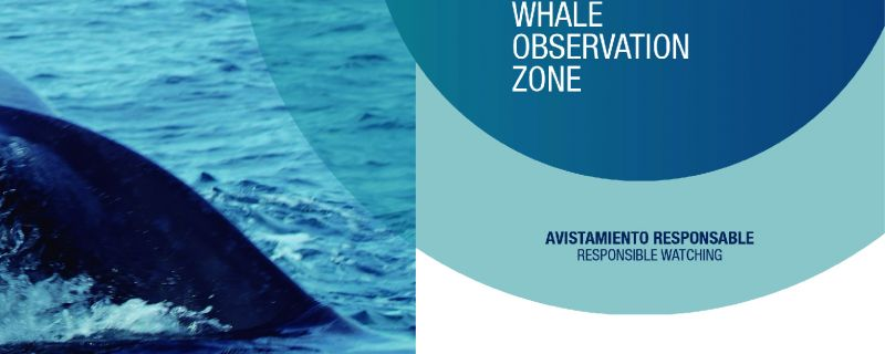 CODE OF CONDUCT FOR WHALE WATCHING